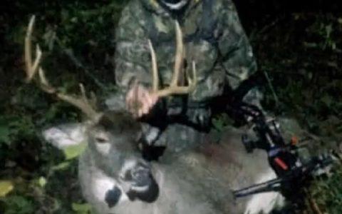 Iowa Deer 8